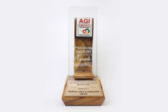 AGI BEST ELECTRICAL _ ELECTRONICS SECTOR WINNER 2013