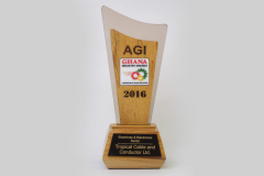 AGI BEST ELECTRICAL _ ELECTRONICS SECTOR WINNER 2016