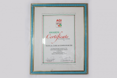 AGI BEST ELECTRICALS _ ELECTRONICS SECTOR COMPANY 2012